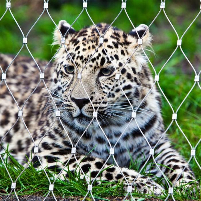 Stainless steel zoo mesh fencing