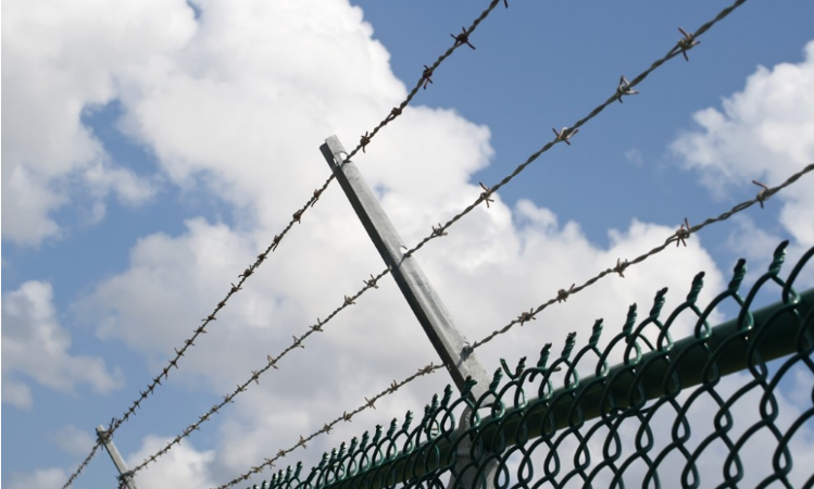 Barbed Wire - Galvanised - Green